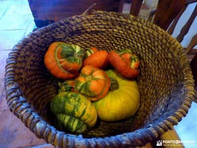 Enebral y Ermita Hornuez;Villa Maderuelo;gr 10 madrid viajes puente noviembre actividades aire libre